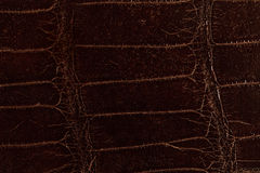 Dark brown leather texture Stock Photography