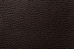 Dark Brown leather texture print as background Stock Images