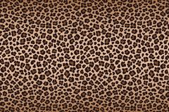 Dark brown leopard fur texture with dark border. Vector. Illustration Stock Photo