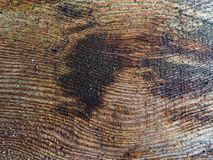 Natural wooden board royalty free stock image