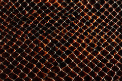 Dark brown snakeskin texture Royalty Free Stock Image