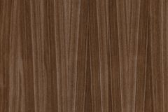 Dark brown walnut timber tree wooden surface structure texture background stock image