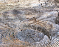 Wood texture with circles Stock Photography