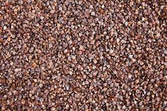 Dark Buckwheat texture. buckwheat groats in skin in shell. stock photography