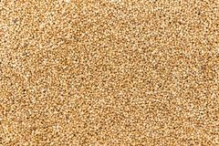 Dark Buckwheat texture high-quality photo of premium buckwheat groats. Dark Buckwheat texture high-quality photo of premium buckwheat groats Royalty Free Stock Images