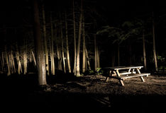 Dark Camp Site with Picnic Table Stock Images