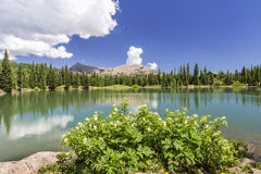 Dark Canyon lake in Utah Stock Images