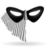 Dark carnival mask with veil Stock Images
