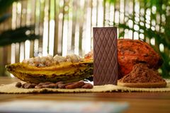 Dark chocolate bar, raw cocoa fruit, cacao beans, cacao butter on wooden table