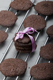 Dark chocolate biscuits Royalty Free Stock Photos