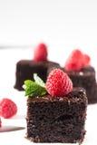 Dark chocolate cake with raspberries Stock Photography