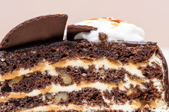 Dark chocolate cake slice. With white cream, nuts and curl, close up Royalty Free Stock Photography