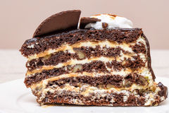 Dark chocolate cake slice. With white cream, nuts and curl, close up Royalty Free Stock Images