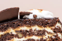 Dark chocolate cake slice. With white cream, nuts and curl, close up Stock Images