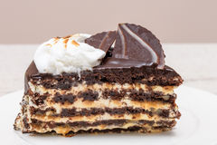 Dark chocolate cake slice. With white cream, nuts and curl, close up Royalty Free Stock Image