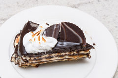 Dark chocolate cake slice. With white cream, nuts and curl, close up Royalty Free Stock Photos