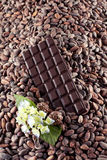 Dark chocolate on a cocoa beans background Stock Image