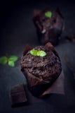 Dark chocolate cookie Stock Photos