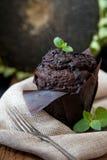 Dark chocolate cookie Royalty Free Stock Photos