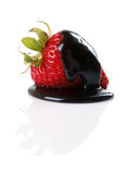 Dark Chocolate Covered Strawberry Royalty Free Stock Images