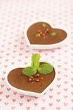 Dark chocolate dessert Royalty Free Stock Image