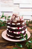 Dark chocolate layered cake with whipped mascarpone cream, chocolate sauce, cherry syrup decorated with sweet marble meringues on stock photo