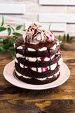Dark chocolate layered cake with whipped mascarpone cream, chocolate sauce, cherry syrup decorated with sweet marble meringues on royalty free stock photos