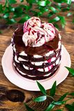 Dark chocolate layered cake with whipped mascarpone cream, chocolate sauce, cherry syrup decorated with sweet marble meringues on stock image