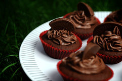 Dark Chocolate Orange Cupcakes. Beautiful luscious dark chocolate and orange cupcakes on a white plate against dark green grass Stock Image