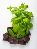 Dark Chocolate pieces with mint herb Royalty Free Stock Images