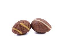 Dark chocolate seashell. Stock Photo