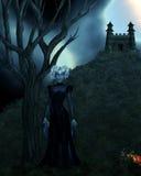 Dark Cinderella Stock Image