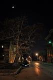 Dark City Street at Night with Moon. Dark urban city street at night with moon, large scary tree and car Stock Images
