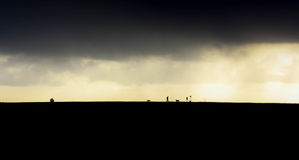 Dark clouds ahead at a dutch. People letting their dogs play during a cold dutch winter at a near Ter Heijde stock images