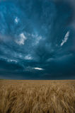 Dark clouds over field Royalty Free Stock Photography