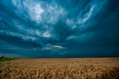 Dark clouds over field Royalty Free Stock Photo