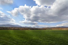 Dark clouds over the field and trees. Sky and field in the spring. Royalty Free Stock Image