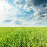 Dark clouds over green grass field. Low dark clouds over green grass field Stock Photos