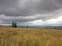 Dark clouds over the prairie path through hillside with dry vegetation Stock Images