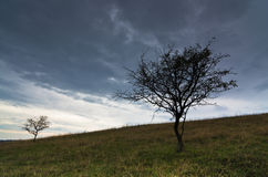 Dark clouds over the prairie path surrounded by a small hills dunes and rare vegetation Stock Photography