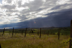 Dark Clouds over Vineyard Royalty Free Stock Photography