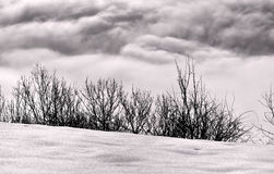 Dark clouds and snow Royalty Free Stock Images