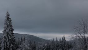 Dark clouds on winter sky with snow on forest trees