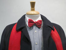 Dark coat with red scarf and bowtie. Dark cashmere coat with red scarf, striped shirt with white collar and red bowtie Royalty Free Stock Photos