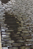 Dark Cobblestone Puddle Stock Images