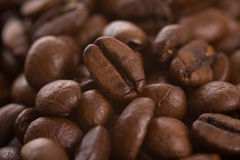 Dark coffee beans Stock Photos