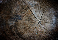 Dark color of wood patterns. Stock Photography