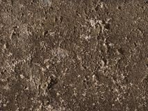 Dark concrete background Stock Image