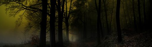Dark creepy foggy forest. Man in dark clothes on the road surrounded by gloomy magical landscape. Late autumn/fall,november evening, South Moravia, Eastern royalty free stock photography