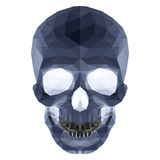 Dark crystal skull Stock Images